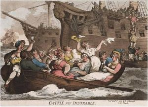 Rowlandson, Cattle not insurable (1809)